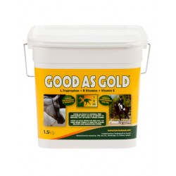 Good As Gold - TRM