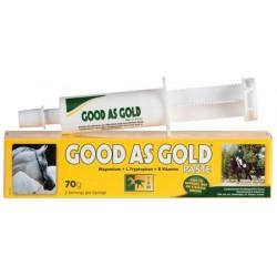 Good As Gold Paste