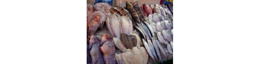 Poissons - Crustacés